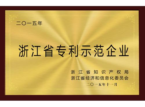 和也浙江省专利示范企业证书